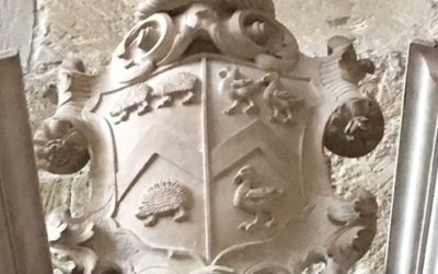 Herissons in the Chichester Cathedral
